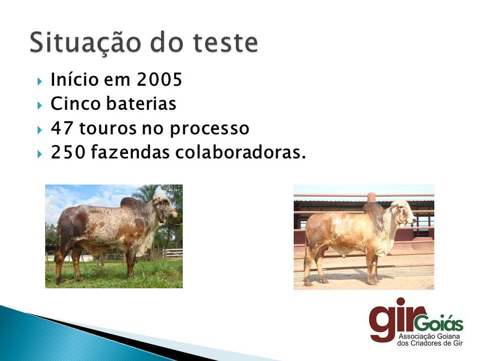 Início em 2005 Cinco baterias 47 touros no processo 250 fazendas colaboradoras.