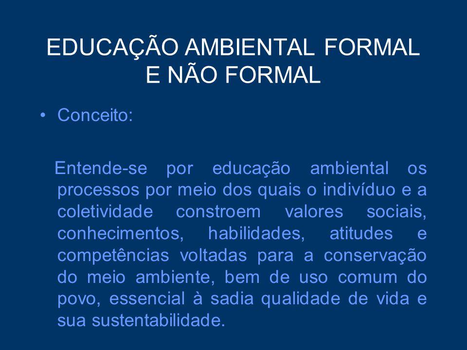 EDUCAÇÃO AMBIENTAL FORMAL E NÃO FORMAL Conceito: Entende-se por educação ambiental os processos por meio dos quais o indivíduo e a coletividade constr