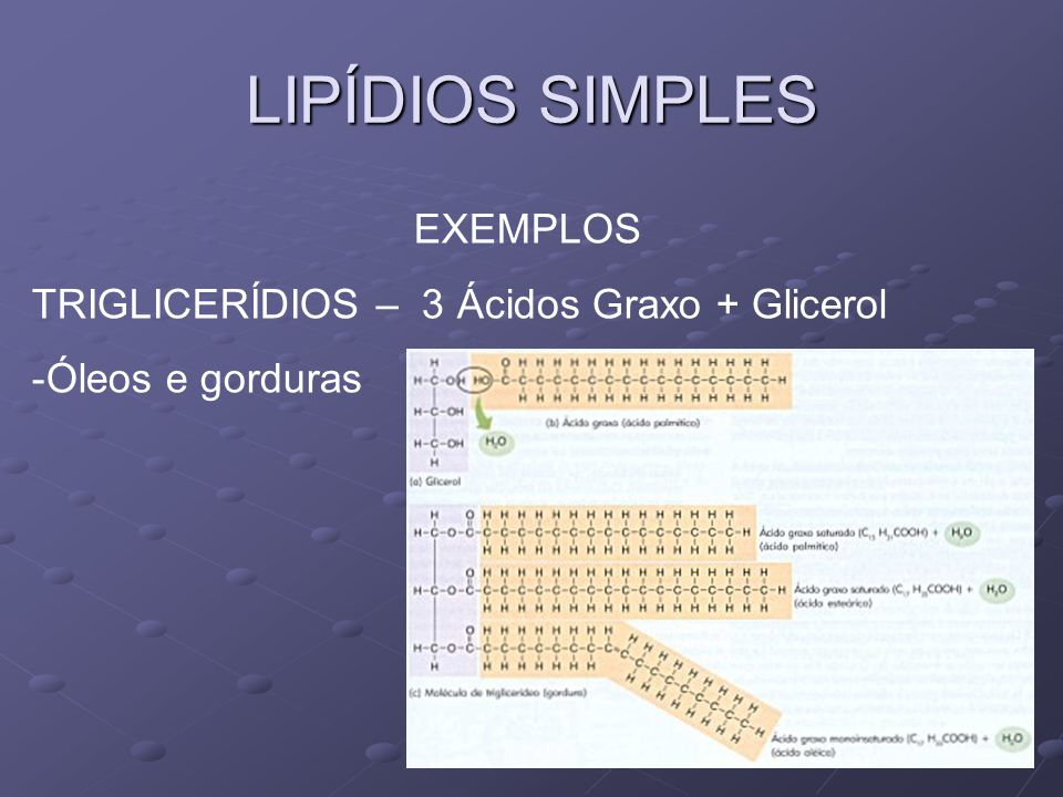 LIPÍDIOS SIMPLES EXEMPLOS CERÍDIOS – 1 Ácido Graxo (ou +) + Poliálcool (16 C) - Ceras