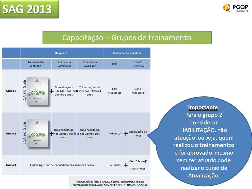 SAG 2013 Capacitação – Grupos de treinamento Importante Importante: Para o grupo 2 considerar HABILITAÇÃO, não atuação, ou seja, quem realizou o trein