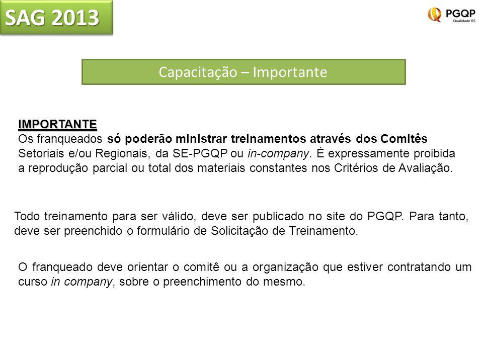 SAG 2013 Capacitação – Importante Todo treinamento para ser válido, deve ser publicado no site do PGQP. Para tanto, deve ser preenchido o formulário d