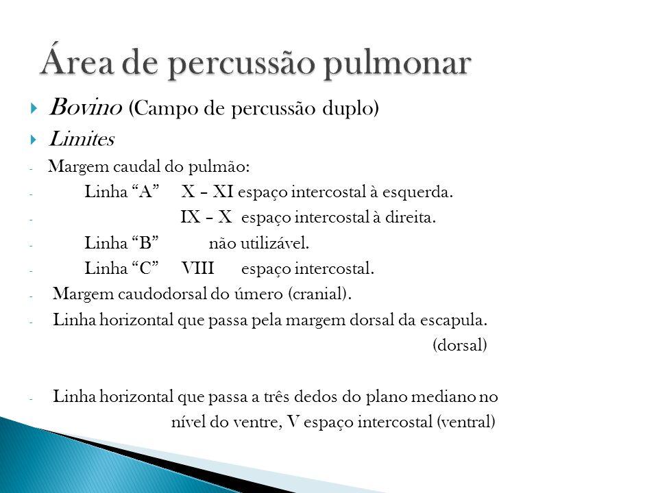 Bovino (Campo de percussão duplo) Limites - Margem caudal do pulmão: - Linha A X – XI espaço intercostal à esquerda. - IX – X espaço intercostal à dir