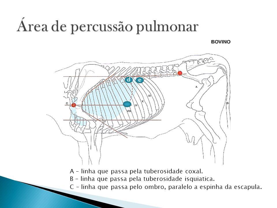 A – linha que passa pela tuberosidade coxal. B – linha que passa pela tuberosidade isquiatica. C – linha que passa pelo ombro, paralelo a espinha da e