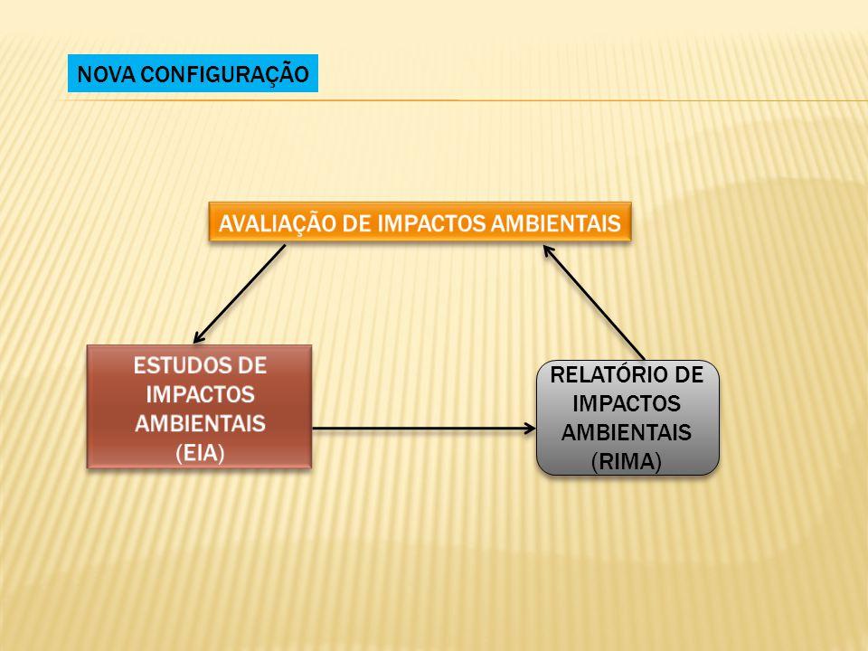 NOVA CONFIGURAÇÃO RELATÓRIO DE IMPACTOS AMBIENTAIS (RIMA) RELATÓRIO DE IMPACTOS AMBIENTAIS (RIMA)