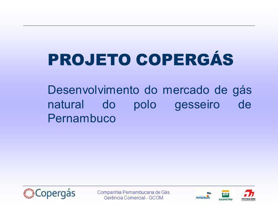 Companhia Pernambucana de Gás Gerência Comercial - GCOM PROJETO COPERGÁS Desenvolvimento do mercado de gás natural do polo gesseiro de Pernambuco