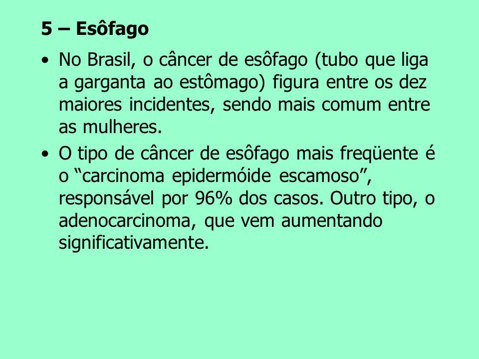 5 – Esôfago No Brasil, o câncer de esôfago (tubo que liga a garganta ao estômago) figura entre os dez maiores incidentes, sendo mais comum entre as mu