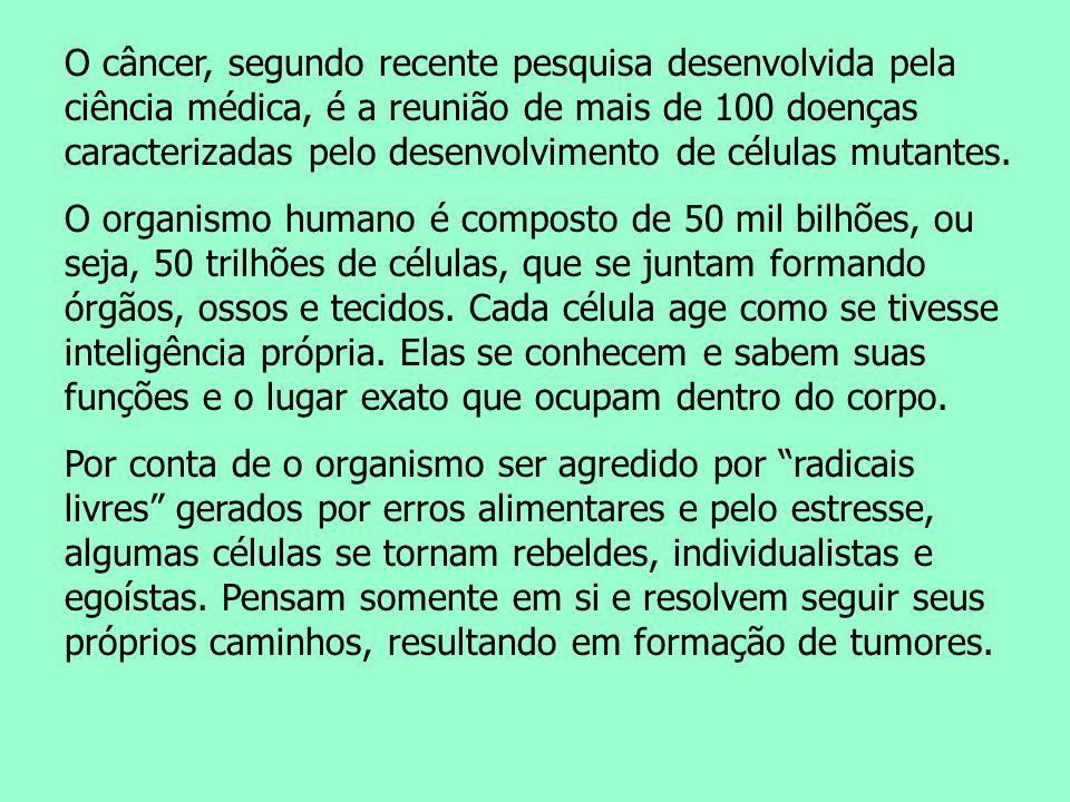 Naturoterapeuta Wilson Dias E-mail: wilson_terapeuta@hotmail.com