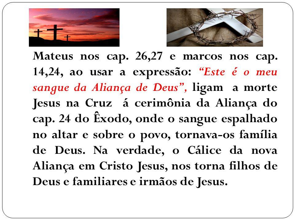 Mateus nos cap. 26,27 e marcos nos cap. 14,24, ao usar a expressão: Este é o meu sangue da Aliança de Deus, ligam a morte Jesus na Cruz á cerimônia da