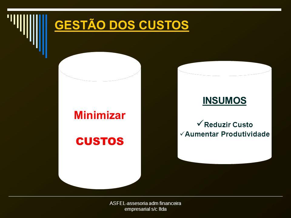 ASFEL-assesoria adm financeira empresarial s/c ltda Minimizar CUSTOS INSUMOS Reduzir Custo Aumentar Produtividade GESTÃO DOS CUSTOS