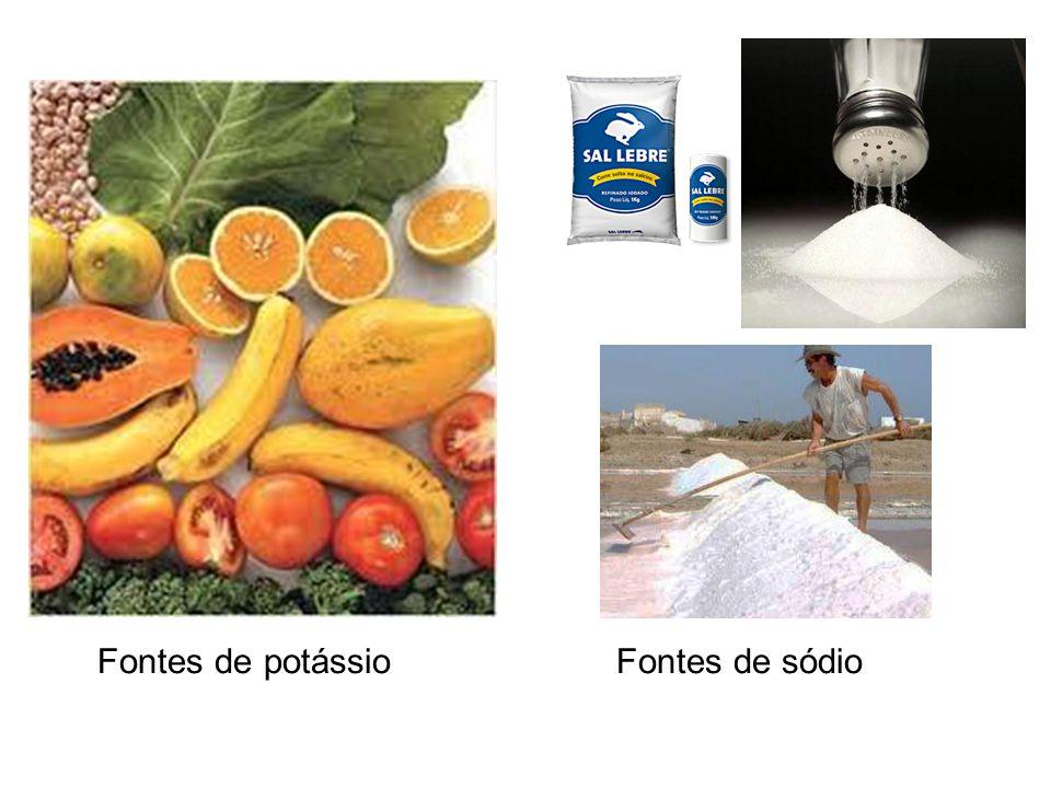 Fontes de potássio Fontes de sódio