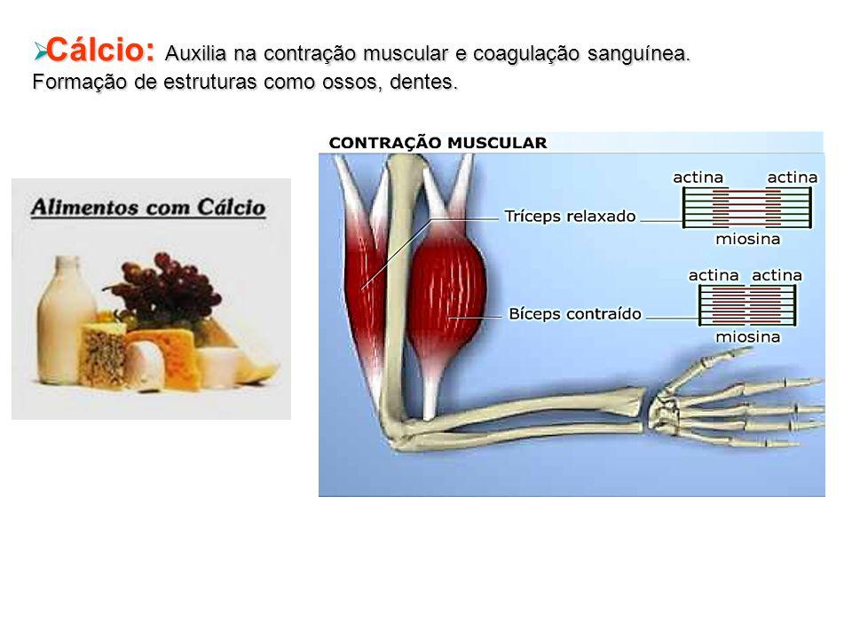 Cálcio: Auxilia na contração muscular e coagulação sanguínea.
