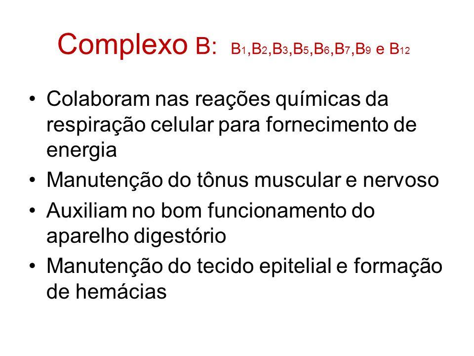 Complexo B: B 1,B 2,B 3,B 5,B 6,B 7,B 9 e B 12 Colaboram nas reações químicas da respiração celular para fornecimento de energia Manutenção do tônus muscular e nervoso Auxiliam no bom funcionamento do aparelho digestório Manutenção do tecido epitelial e formação de hemácias