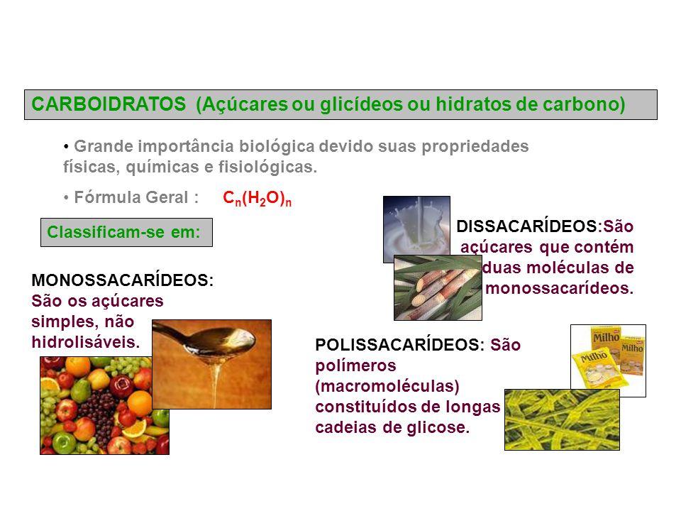 CARBOIDRATOS (Açúcares ou glicídeos ou hidratos de carbono) Grande importância biológica devido suas propriedades físicas, químicas e fisiológicas.