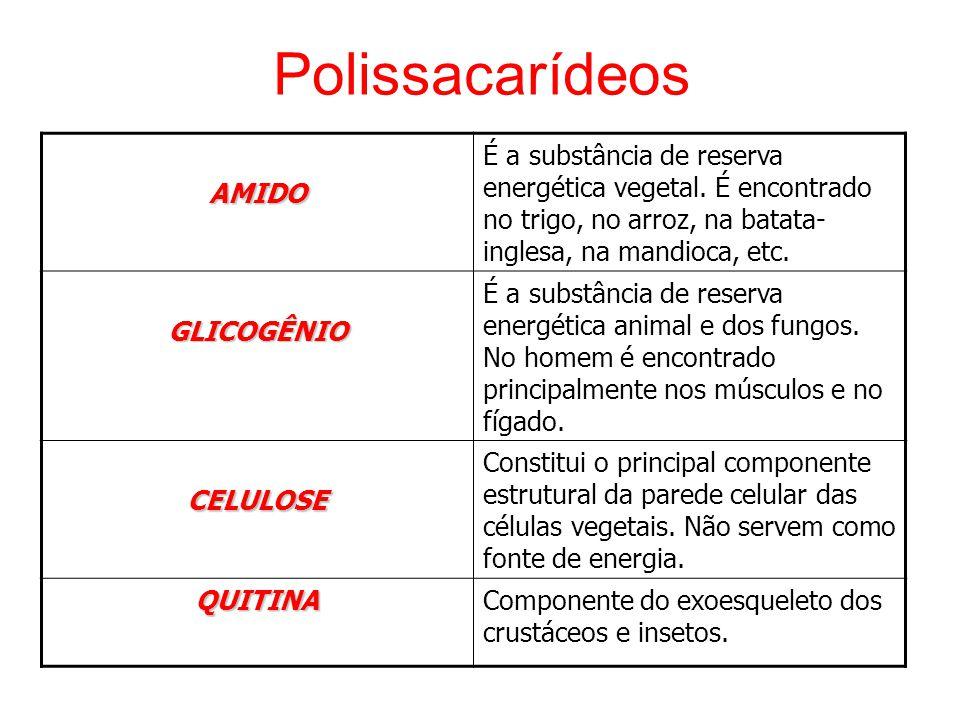 PolissacarídeosAMIDO É a substância de reserva energética vegetal.