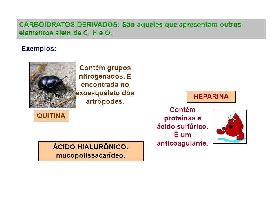 CARBOIDRATOS DERIVADOS: São aqueles que apresentam outros elementos além de C, H e O.