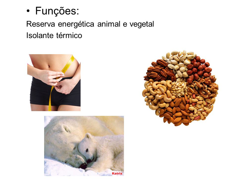 Funções: Reserva energética animal e vegetal Isolante térmico