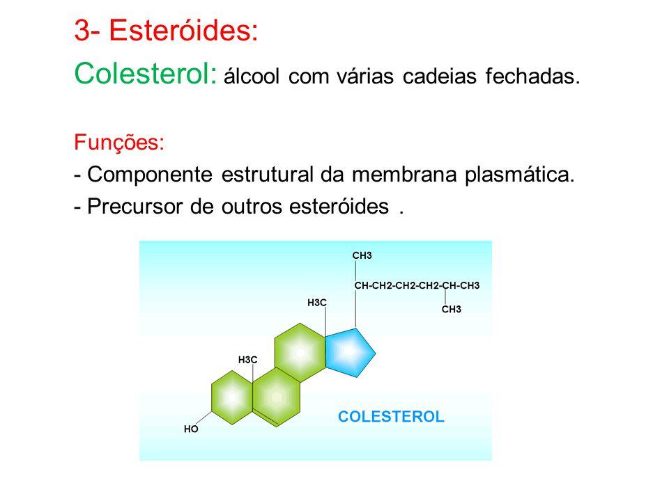 3- Esteróides: Colesterol: álcool com várias cadeias fechadas.