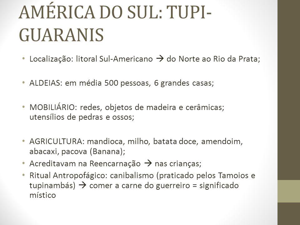 AMÉRICA DO SUL: TUPI- GUARANIS Localização: litoral Sul-Americano do Norte ao Rio da Prata; ALDEIAS: em média 500 pessoas, 6 grandes casas; MOBILIÁRIO