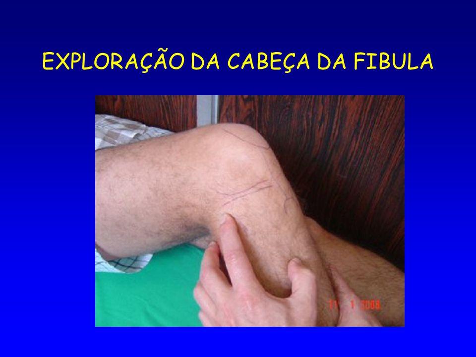 EXPLORAÇÃO DA CABEÇA DA FIBULA