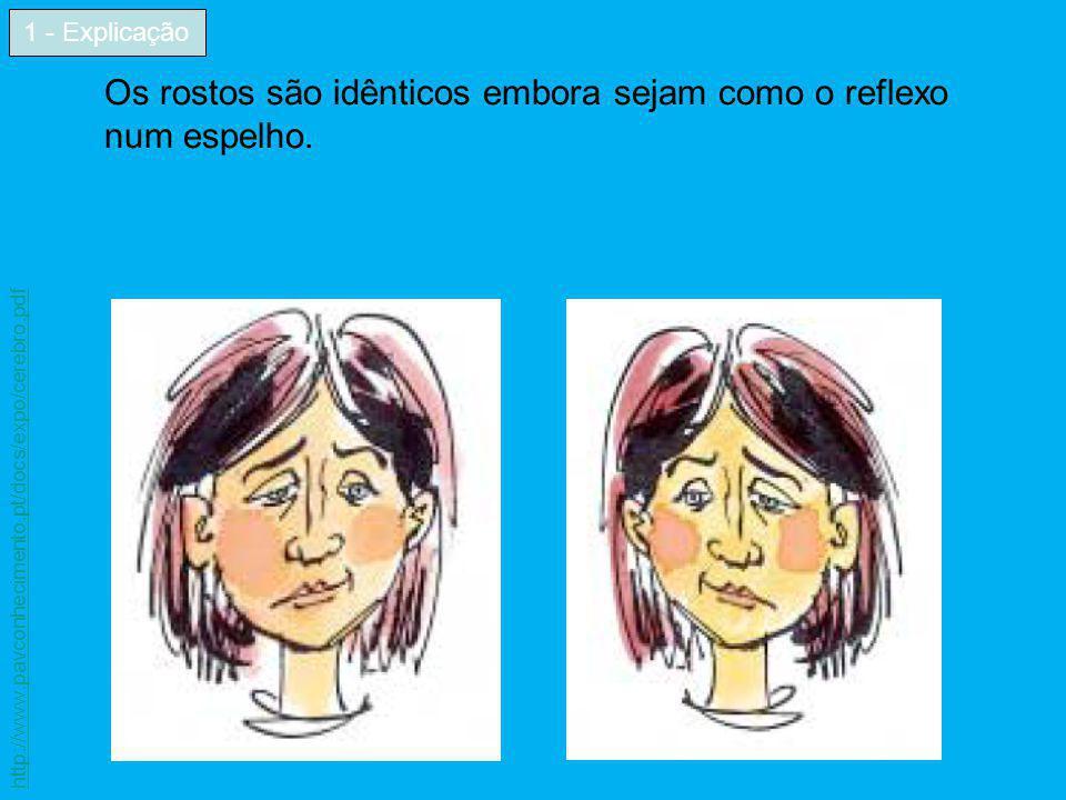 Os rostos são idênticos embora sejam como o reflexo num espelho. 1 - Explicação http://www.pavconhecimento.pt/docs/expo/cerebro.pdf