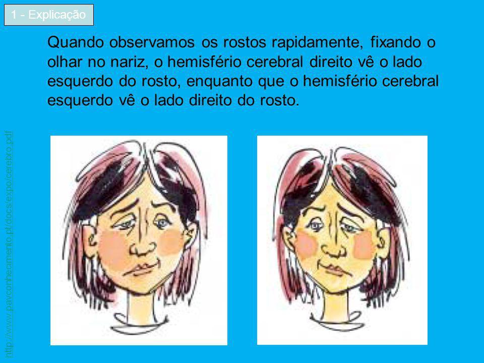 Quando observamos os rostos rapidamente, fixando o olhar no nariz, o hemisfério cerebral direito vê o lado esquerdo do rosto, enquanto que o hemisféri