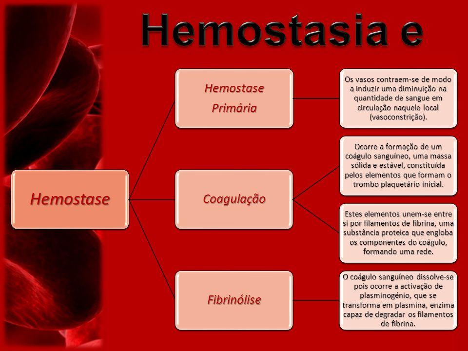 1)Conjunto dos fenómenos fisiológicos responsáveis pela paragem de uma hemorragia, que incluem: a) vasoconstrição; b) formação do agregado plaquetário