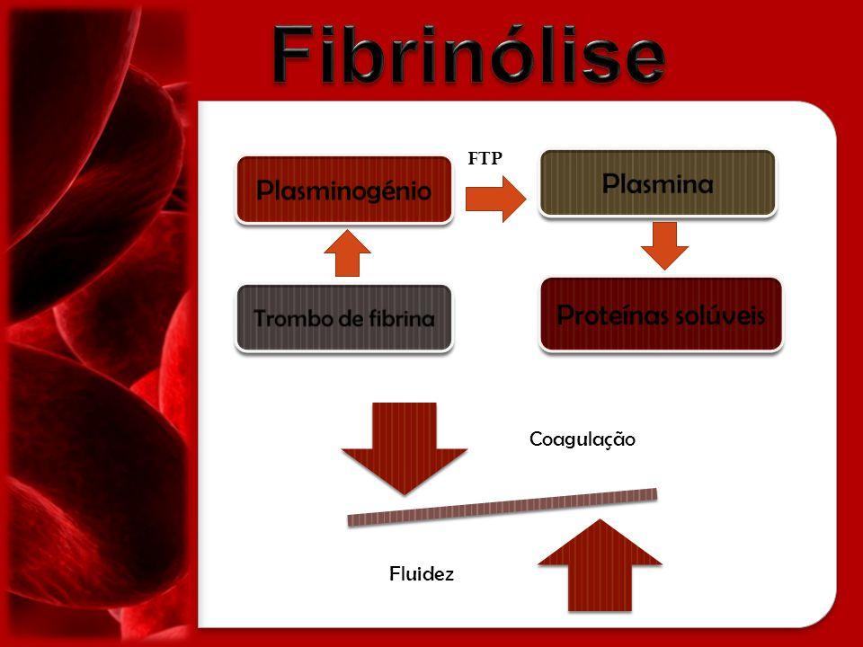 Coagulação Fluidez FTP