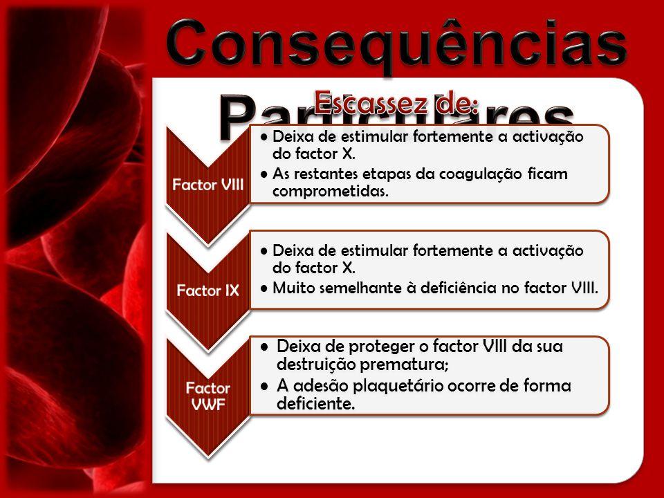 Factor VIII Deixa de estimular fortemente a activação do factor X. As restantes etapas da coagulação ficam comprometidas. Factor IX Deixa de estimular