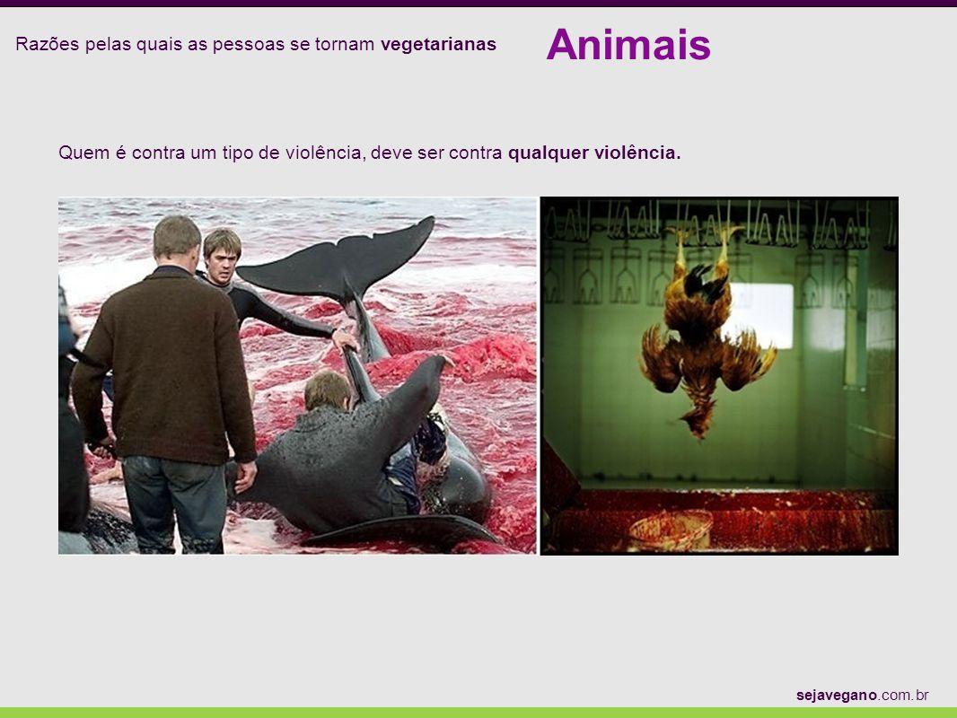 Razões pelas quais as pessoas se tornam vegetarianas Animais sejavegano.com.br Quem é contra um tipo de violência, deve ser contra qualquer violência.