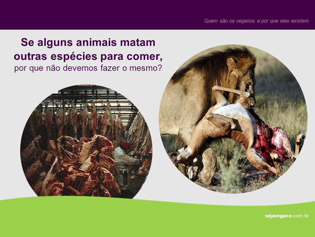 Se alguns animais matam outras espécies para comer, por que não devemos fazer o mesmo? sejavegano.com.br Quem são os veganos e por que eles existem