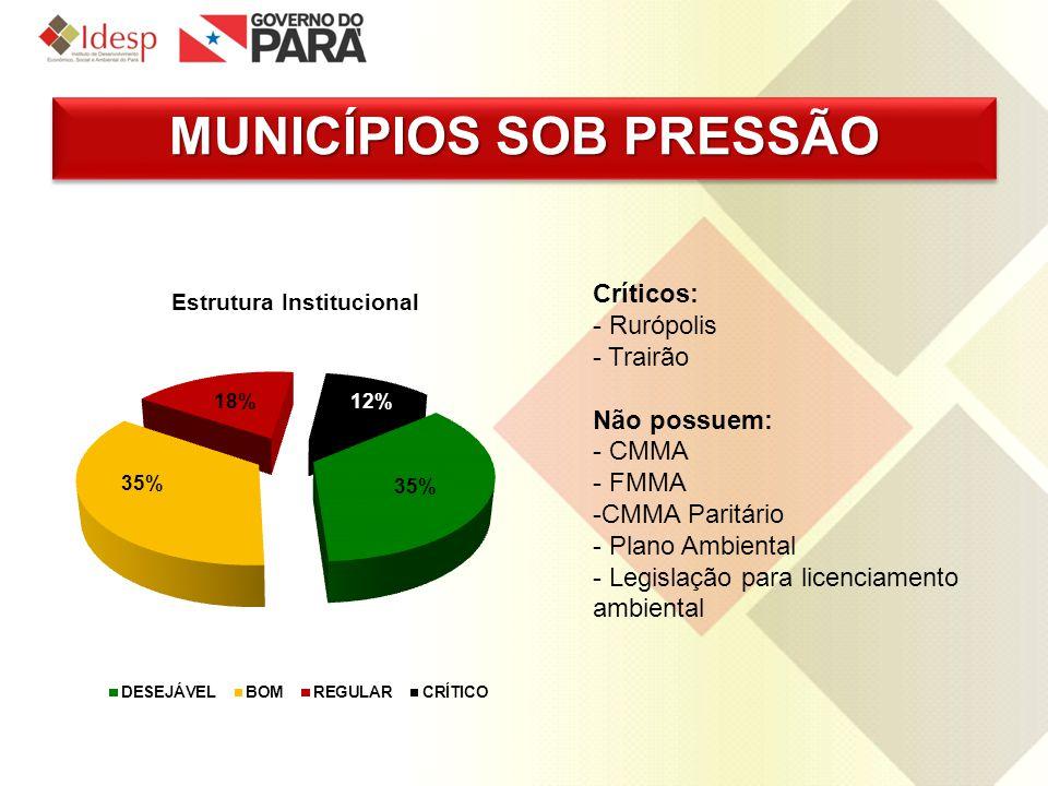 MUNICÍPIOS SOB PRESSÃO Críticos: - Rurópolis - Trairão Não possuem: - CMMA - FMMA -CMMA Paritário - Plano Ambiental - Legislação para licenciamento am
