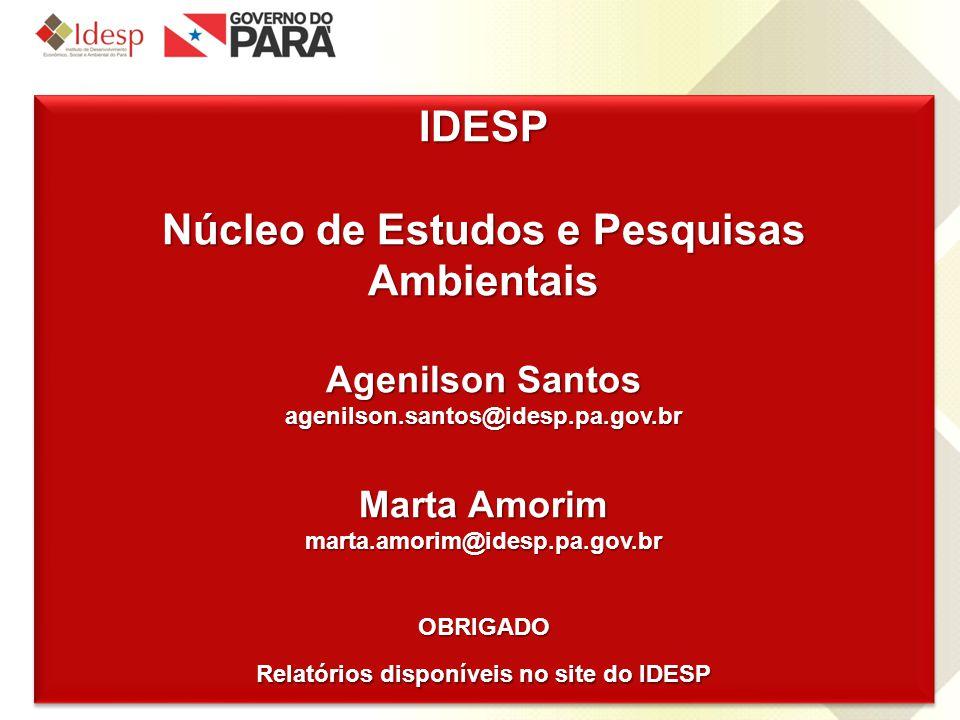 www.idesp.pa.gov.br IDESP Núcleo de Estudos e Pesquisas Ambientais Agenilson Santos agenilson.santos@idesp.pa.gov.br Marta Amorim marta.amorim@idesp.p