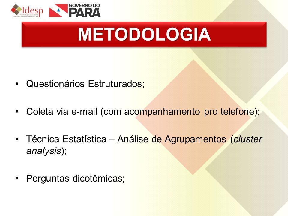 METODOLOGIAMETODOLOGIA Questionários Estruturados; Coleta via e-mail (com acompanhamento pro telefone); Técnica Estatística – Análise de Agrupamentos