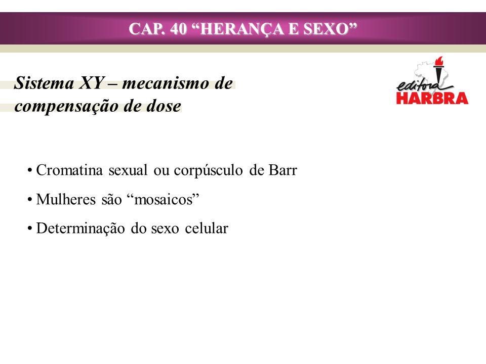 CAP. 40 HERANÇA E SEXO Sistema XY – mecanismo de compensação de dose Cromatina sexual ou corpúsculo de Barr Mulheres são mosaicos Determinação do sexo
