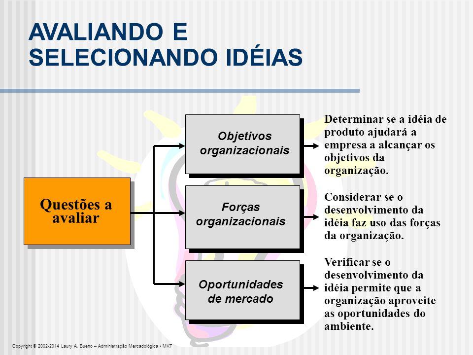 AVALIANDO E SELECIONANDO IDÉIAS Questões a avaliar Objetivos organizacionais Determinar se a idéia de produto ajudará a empresa a alcançar os objetivo