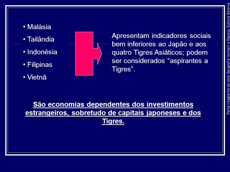 Parte integrante da obra Geografia Homem e Espaço, Editora Saraiva TIGRES: apresentam indicadores sociais próximos aos dos países desenvolvidos; economia bastante diversificada; exportação de grandes quantidades de bens industrializados.
