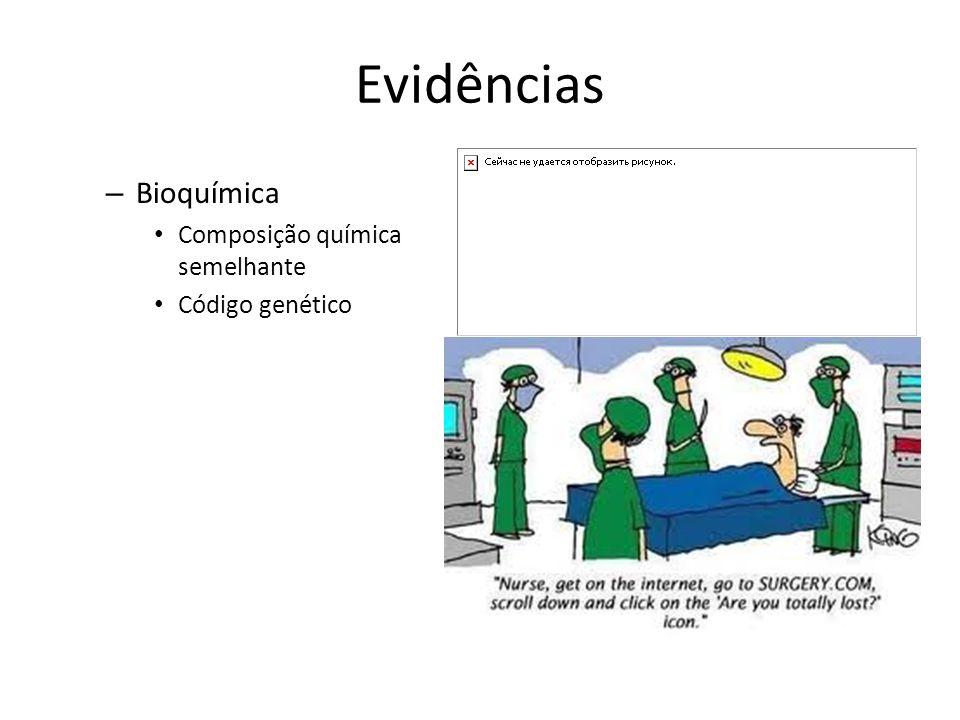 Evidências – Bioquímica Composição química semelhante Código genético
