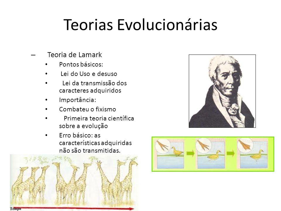 Teorias Evolucionárias – Teoria de Lamark Pontos básicos: Lei do Uso e desuso Lei da transmissão dos caracteres adquiridos Importância: Combateu o fix