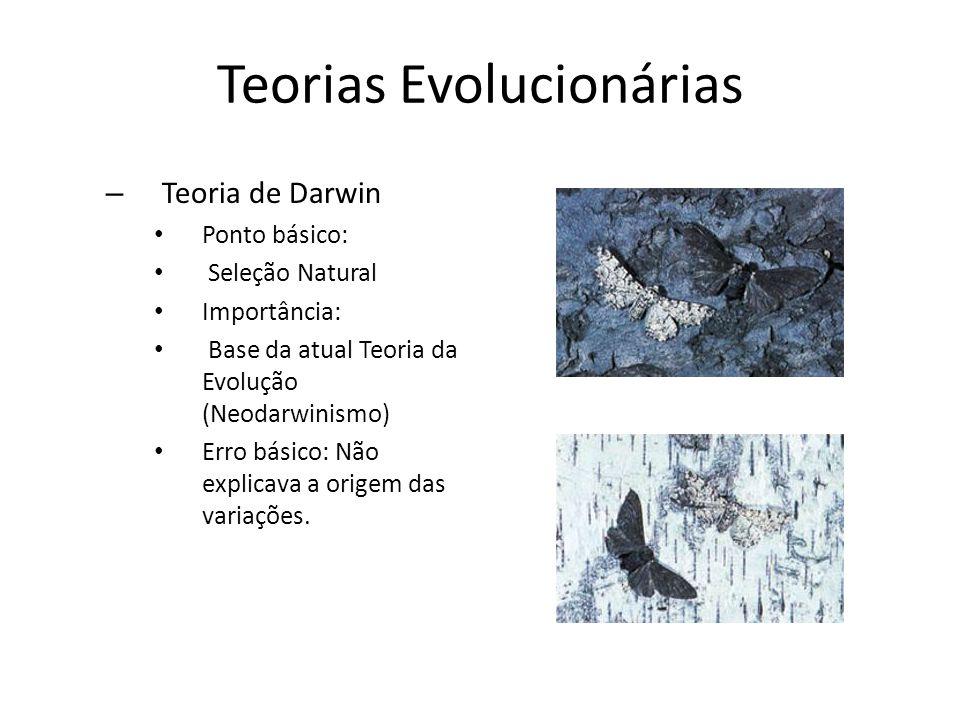 Teorias Evolucionárias – Teoria de Darwin Ponto básico: Seleção Natural Importância: Base da atual Teoria da Evolução (Neodarwinismo) Erro básico: Não