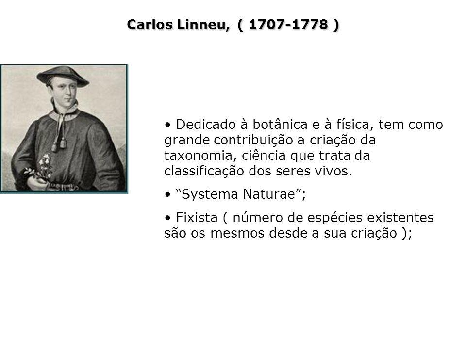Carlos Linneu, ( 1707-1778 ) Dedicado à botânica e à física, tem como grande contribuição a criação da taxonomia, ciência que trata da classificação d