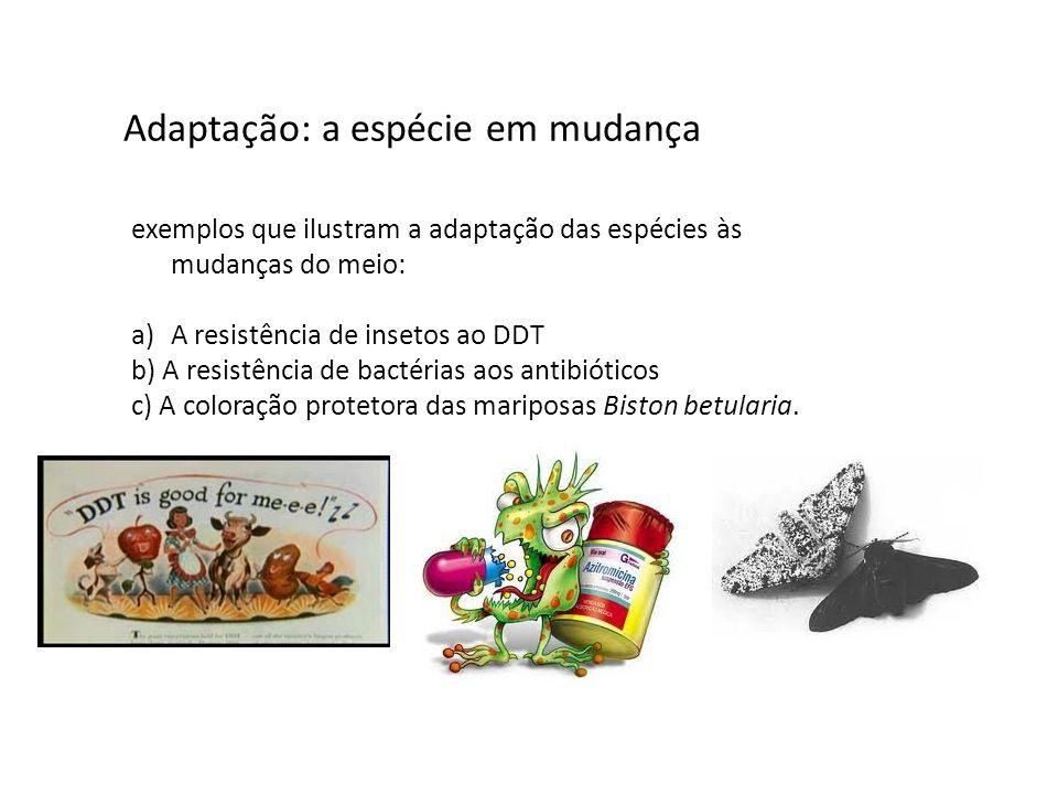 Adaptação: a espécie em mudança exemplos que ilustram a adaptação das espécies às mudanças do meio: a)A resistência de insetos ao DDT b) A resistência