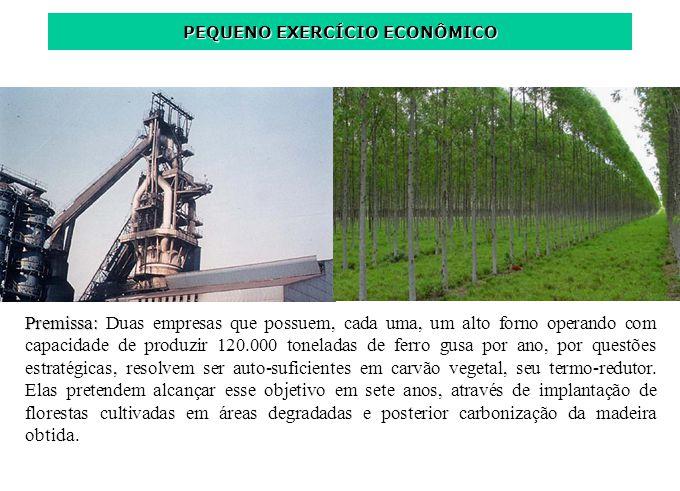 Premissa: Premissa: Duas empresas que possuem, cada uma, um alto forno operando com capacidade de produzir 120.000 toneladas de ferro gusa por ano, po