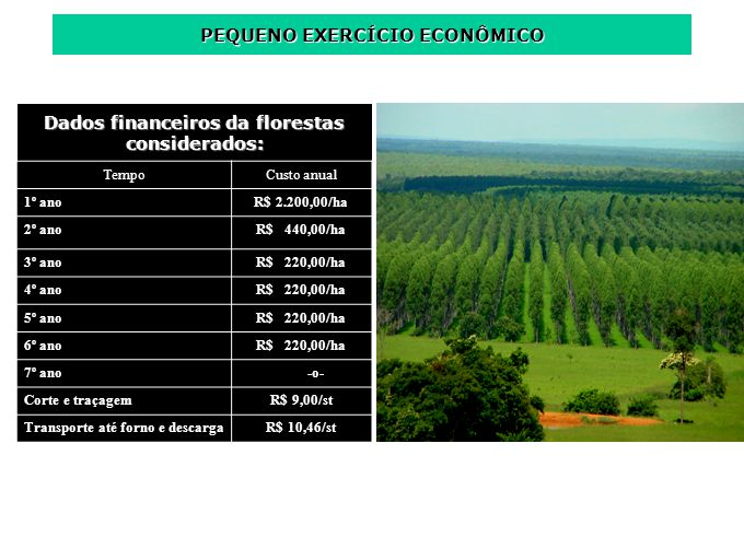 Dados financeiros da florestas considerados: TempoCusto anual 1º anoR$ 2.200,00/ha 2º anoR$ 440,00/ha 3º anoR$ 220,00/ha 4º anoR$ 220,00/ha 5º anoR$ 2