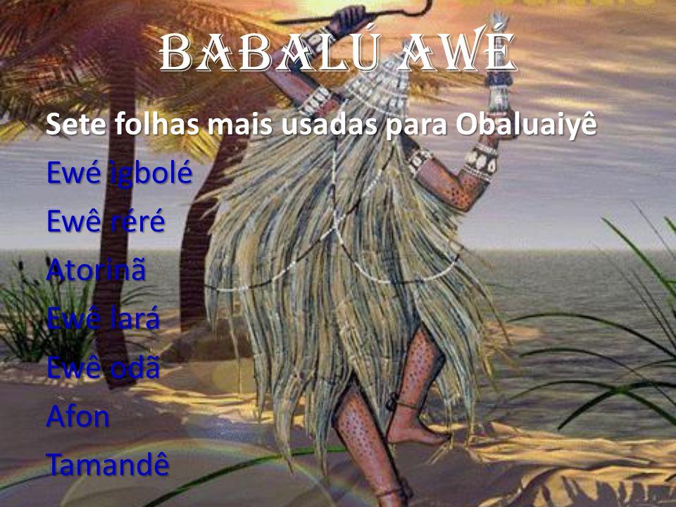 Babalú AWé Sete folhas mais usadas para Obaluaiyê Ewé ìgbolé Ewê réré Atorinã Ewê lará Ewê odã AfonTamandê