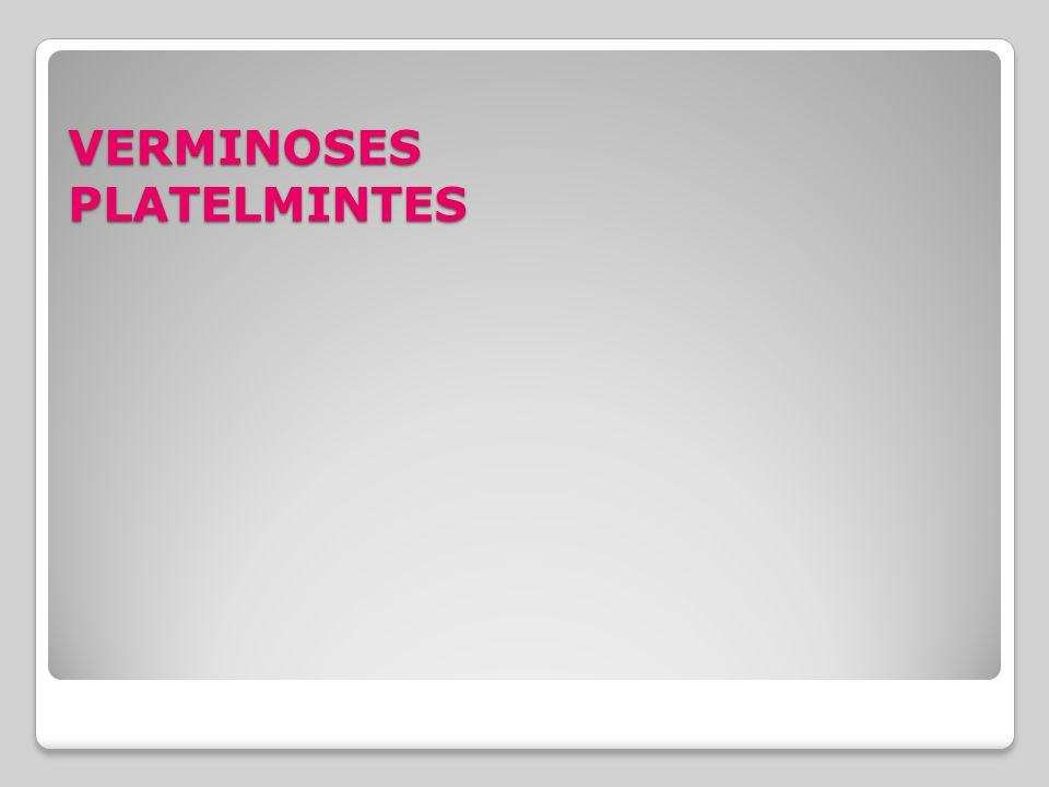 VERMINOSES PLATELMINTES