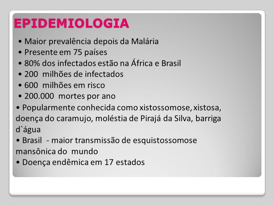 Maior prevalência depois da Malária Presente em 75 países 80% dos infectados estão na África e Brasil 200 milhões de infectados 600 milhões em risco 2