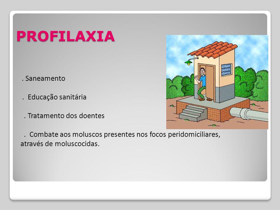 PROFILAXIA. Saneamento. Educação sanitária. Tratamento dos doentes. Combate aos moluscos presentes nos focos peridomiciliares, através de moluscocidas