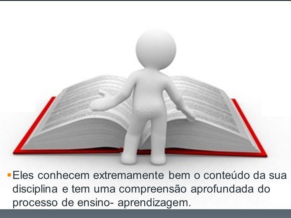 Eles conhecem extremamente bem o conteúdo da sua disciplina e tem uma compreensão aprofundada do processo de ensino- aprendizagem..