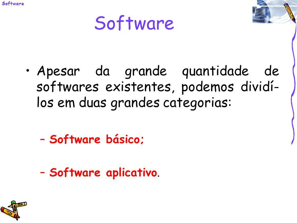 Software Apesar da grande quantidade de softwares existentes, podemos dividí- los em duas grandes categorias: –Software básico; –Software aplicativo.