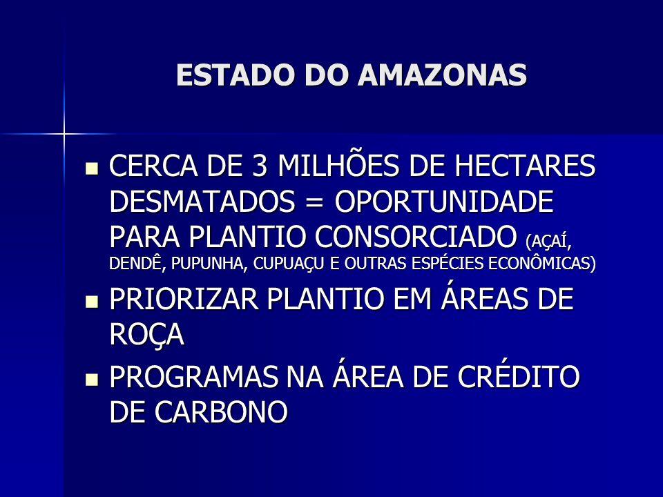 ESTADO DO AMAZONAS CERCA DE 3 MILHÕES DE HECTARES DESMATADOS = OPORTUNIDADE PARA PLANTIO CONSORCIADO (AÇAÍ, DENDÊ, PUPUNHA, CUPUAÇU E OUTRAS ESPÉCIES